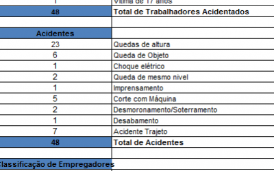 ACIDENTES DE TRABALHO – 2012
